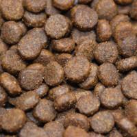 Lachs mit Forelle, Süßkartoffel & Spargel